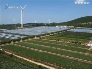 """临港区汪疃镇:用""""工业模式""""打造高效特色""""农业园区"""""""
