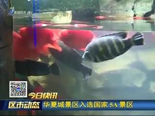快讯:华夏城景区入选国家5A景区