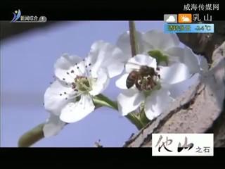 希望的田野 2017-02-15