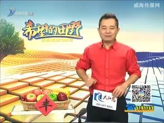 希望的田野 2017-02-08