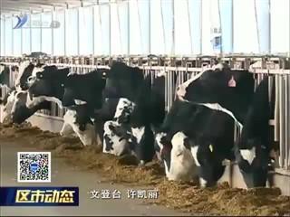 文登区积极开展畜禽养殖标准化示范创建活动