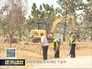 临港区将新建升级50万平方米市政绿化工程