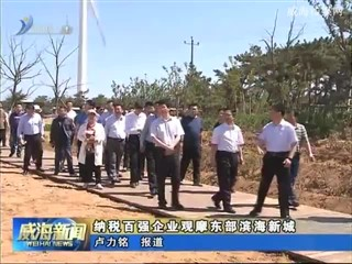 纳税百强企业观摩东部滨海新城
