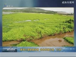 中国海洋资讯 2017-6-23