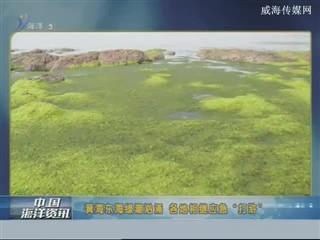 中国海洋资讯 2017-6-25