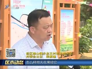 经区崮山镇沙龙王村党支部:带领群众致富奔小康