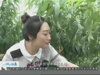 幸福之旅 2017-7-21(18:08:14-18:25:14)