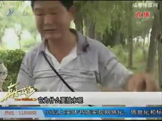 直播威海 2017-8-5