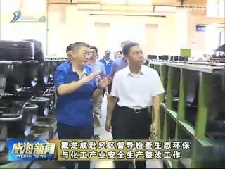 戴龙成赴经区督导检查生态环保与化工产业安全生产整改工作