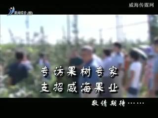 希望的田野 2017-09-05
