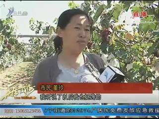 """临港区汪疃镇:葡萄文化旅游节打造发展""""金名片"""""""