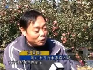 身边故事 2017-11-21