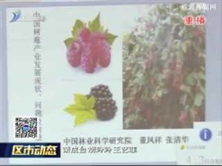 石岛管理区推进高效生态农业蓬勃发展
