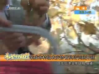 希望的田野 2017-11-07