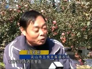 身边故事 2017-11-24