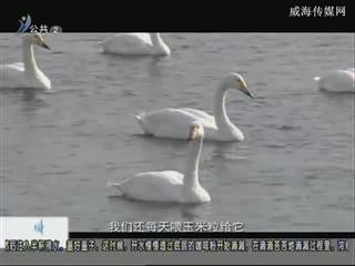 幸福之旅 2017-12-17(18:08:14-18:25:14)