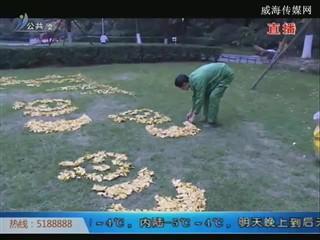 用银杏叶在草坪上作画 绿化师傅惊艳了冬天
