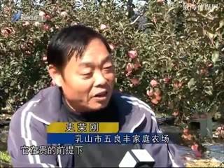 身边故事 2017-12-05