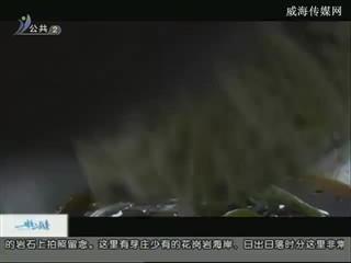 幸福之旅 2017-12-6(18:08:14-18:25:14)