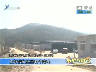 希望的田野 2017-12-01