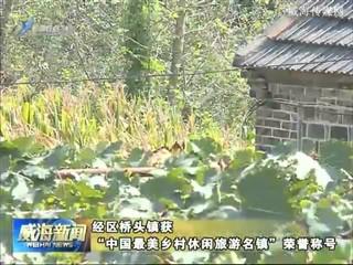 """经区桥头镇获""""中国最美乡村休闲旅游名镇""""荣誉称号"""