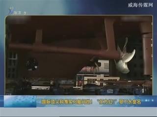 中国海洋资讯   2018-1-24