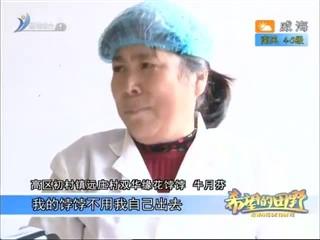 希望的田野 2018-01-12