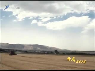 """""""开局2018"""" 品牌农业 品质托底"""