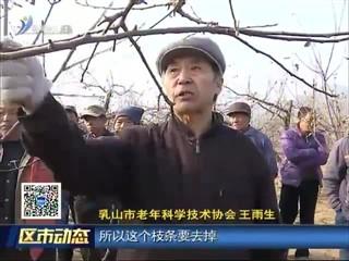 乳山:果树专家发挥余热 助力果农增收致富