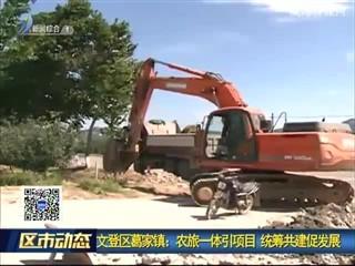 文登区葛家镇:农旅一体引项目 统筹共建促发展