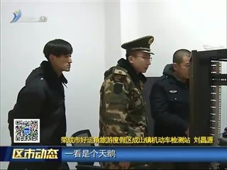 荣成:天鹅触碰高压线受伤 警民合力积极救治