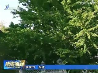 """刘公岛国家森林公园 被评为2017""""中国森林体验基地"""""""