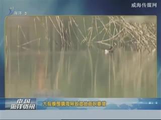 中国海洋资讯 2018-2-8