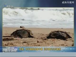中国海洋资讯 2018-2-28