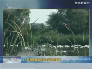 中国海洋资讯 2018-2-10