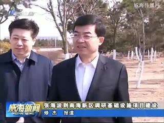 张海波到南海新区调研基础设施项目建设