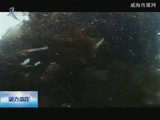 魅力海洋 2018-3-8