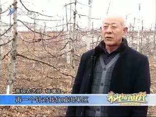 希望的田野 2018-03-10