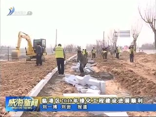 临港区2018年绿化工程建设全面启动