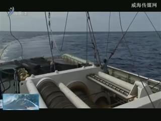魅力海洋2018-3-5