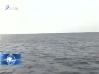 魅力海洋   2018-3-13
