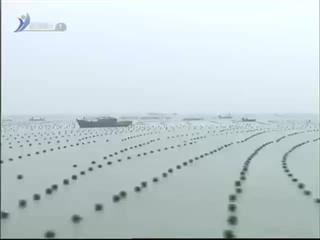 一季度荣成实现渔业总收入95.2亿元