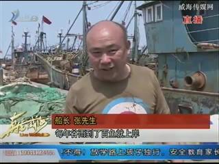 """休渔期将至 渔船抢捕""""最后一网"""""""