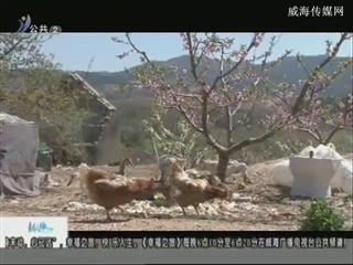 幸福之旅 2018-4-23(18:08:14-18:25:14)