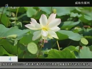 幸福之旅 2018-4-4(18:08:14-18:25:14)