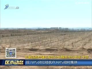 文登区:释放土地活力 激发农村发展动力