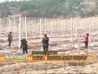 希望的田野 2018-04-09