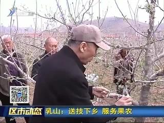 乳山:送技下乡 服务果农