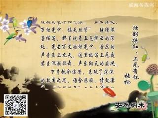 0328中华经典-诗词赏析-烛影摇红·上元有怀