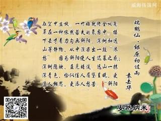 0409中华经典-诗词赏析-瑞鹤仙·郊原初过雨